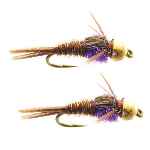 Umpqua Hot Belly Pheasant Tail Purplele 2 Pack