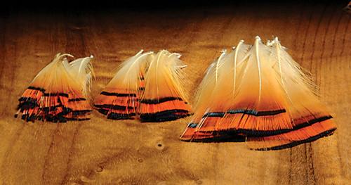 Hareline Golden Pheasant Tippets
