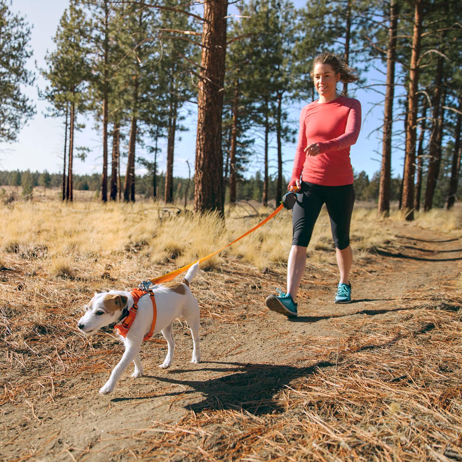 Ruff Hi & Light Dog Harness - AvidMax