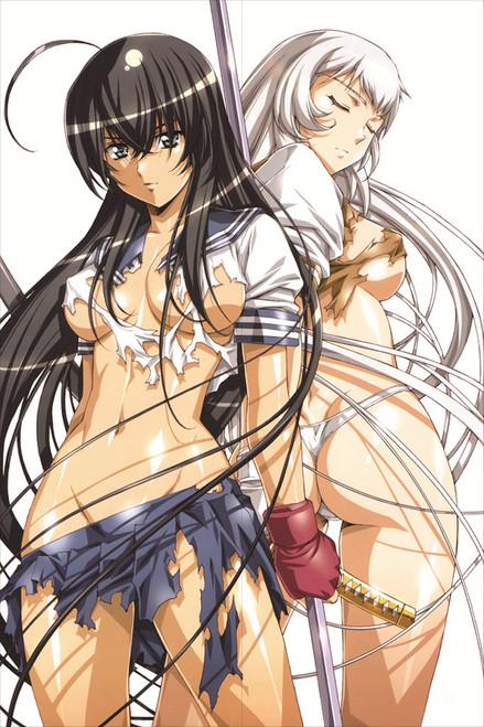 Battle Vixens - Kanu Unchou Anime Dakimakura Pillow Cover   -13