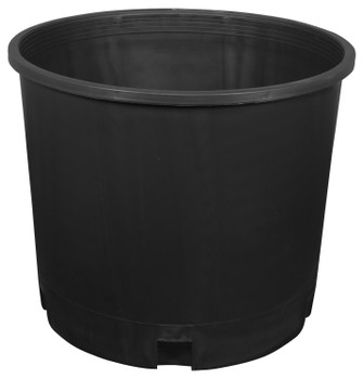 Black Plastic Pot, 5 gal