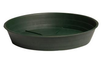 """Grow1 16"""" saucer"""