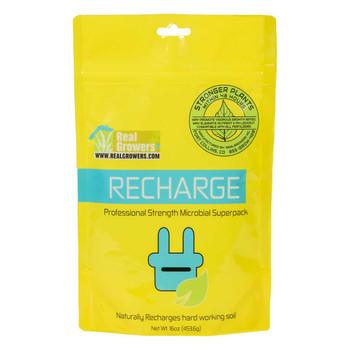 Recharge, 16 oz
