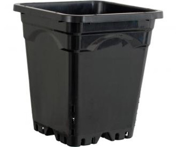 "Active Aqua 12"" x 12"" Square Black Pot, 12"" Tall"