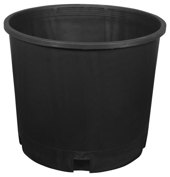 Black Plastic Pot, 5 gal