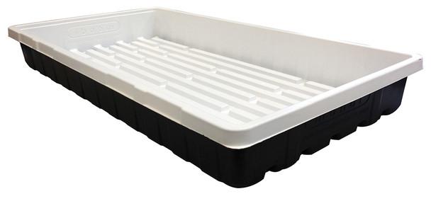 Mondi Black and White Premium 10x20 Propagation Tray