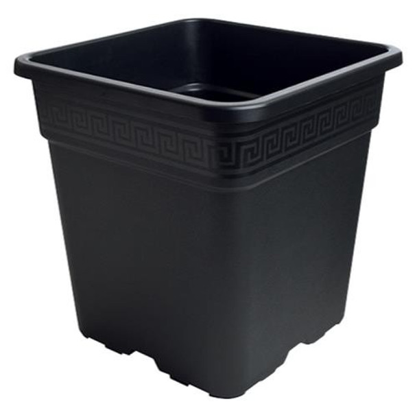 Go Pro Black Square Pot 5 Gal