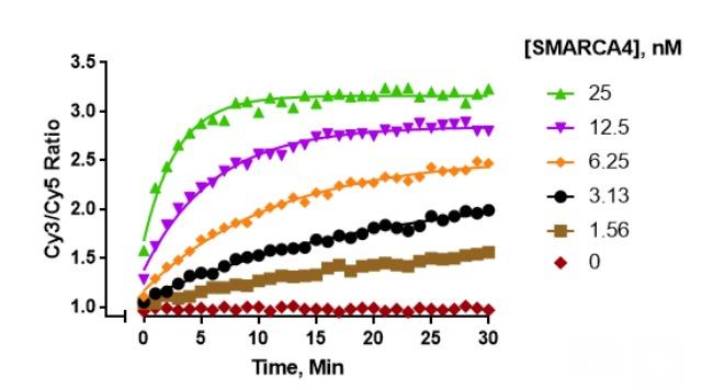 15-1014 ATP-dependent Chromatin Remodeling
