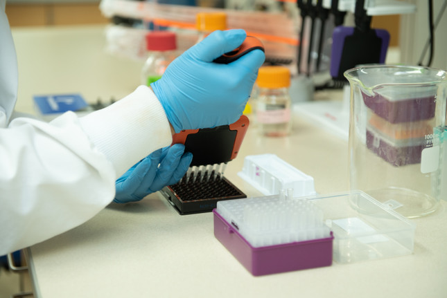 Choosing the Right ChIP Antibody for Your Experiment