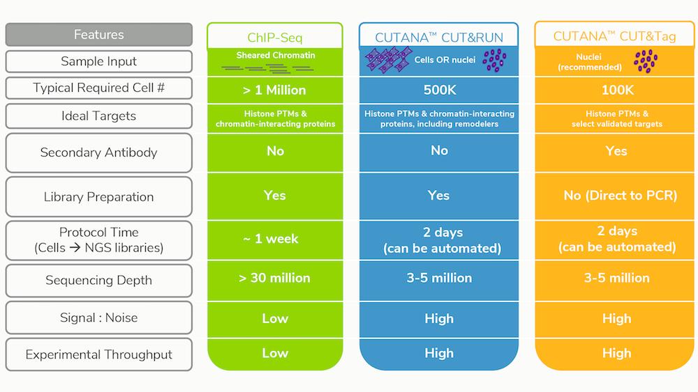 Comparison of ChIP-seq, CUT&RUN, and CUT&Tag
