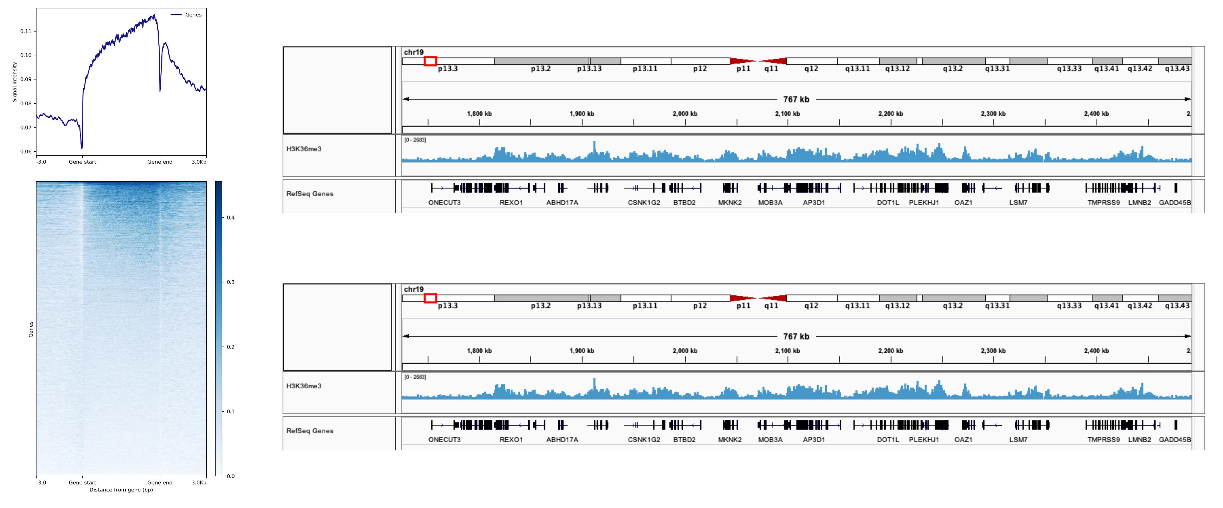 13-0031 Representative SNAP-ChIP-seq results: