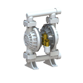Double Diaphragm pump DP40PPT AODD