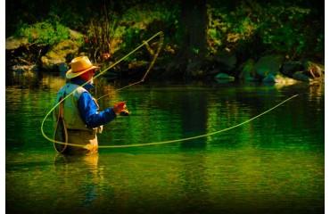 start-trout-fishing-in-missouri-1-370x240.jpg