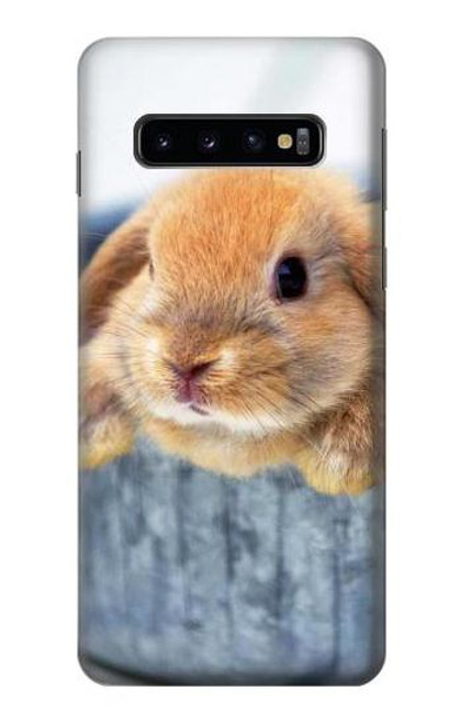 S0242 Cute Rabbit Case For Samsung Galaxy S10