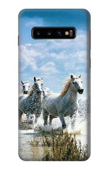 S0250 White Horse 2 Case For Samsung Galaxy S10