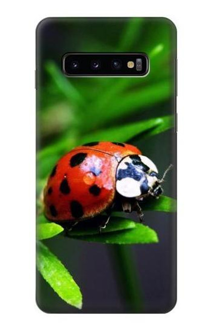 S0263 Ladybug Case For Samsung Galaxy S10
