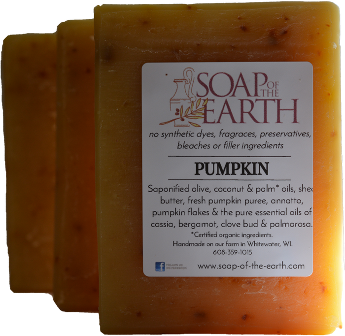 Pumpkin Shea Butter