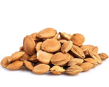 lotus-seed-herbal-supplement-ingredient.jpg