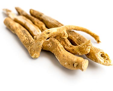 bupleurum-herbal-supplement-ingredient.jpg