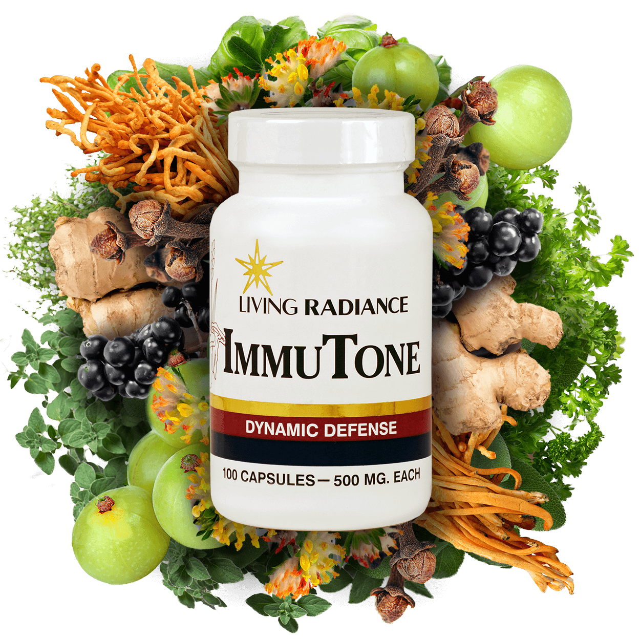 ImmuTone Herbal Supplement