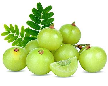 garlic-clove-herbal-supplement-ingredient.jpg