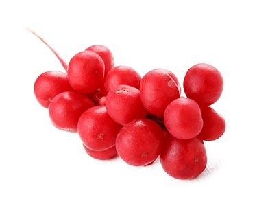 schisandra-chinensi-herbal-supplement-ingredient.jpg