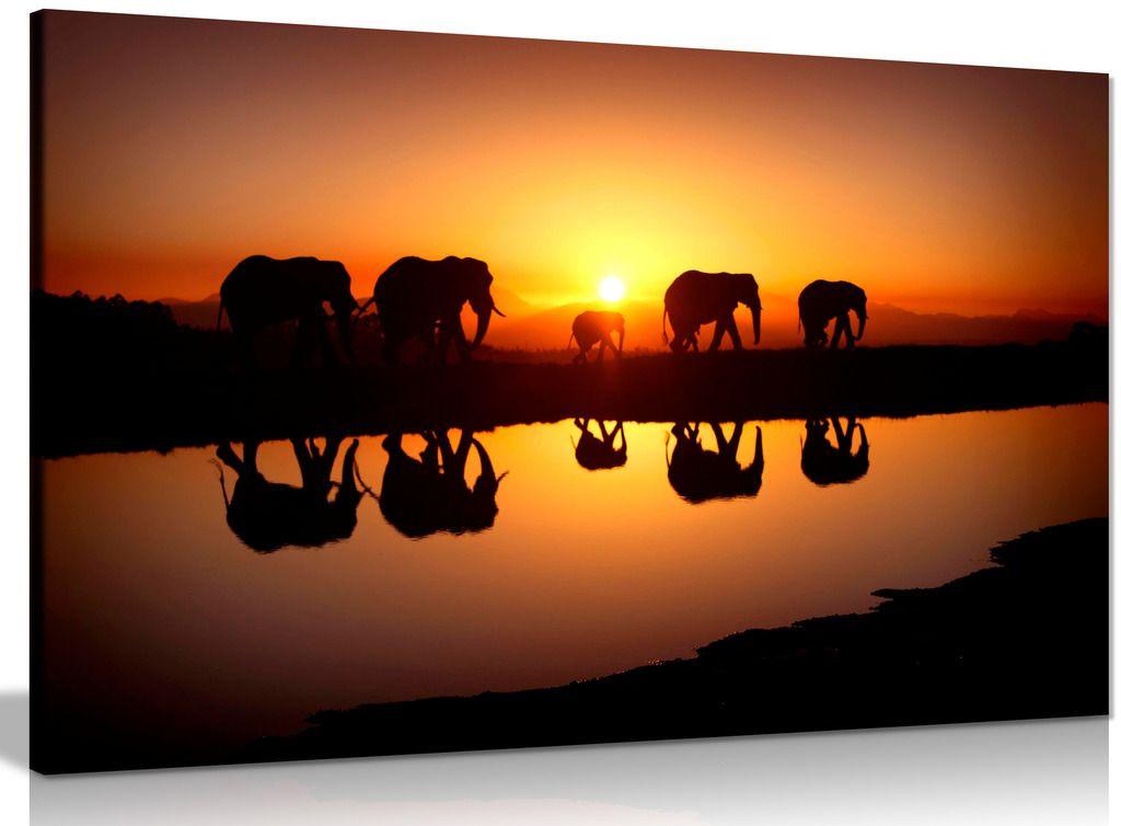 African Sunset Elephants Nature Wildlife Canvas