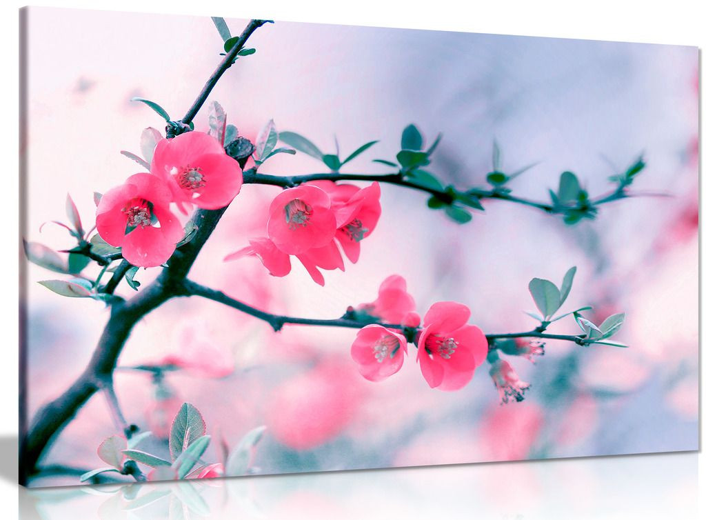 Floral Blooming Spring Purple Flowers On Tree Canvas