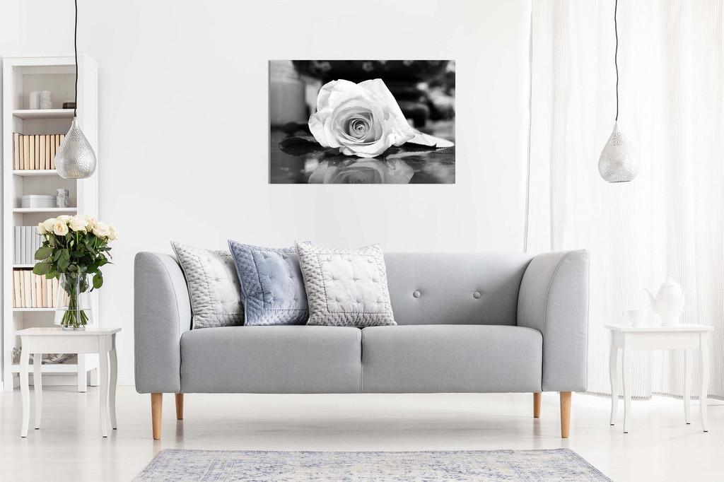 Black & White Rose Canvas