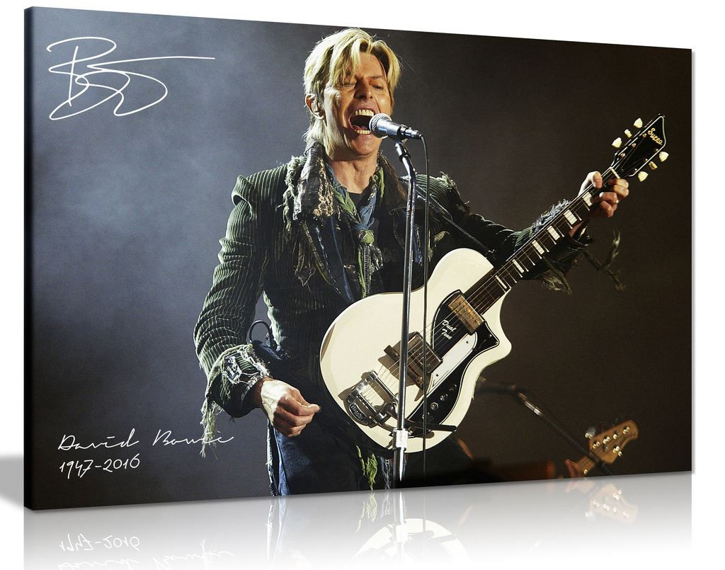 David Bowie Guitar Signature Canvas