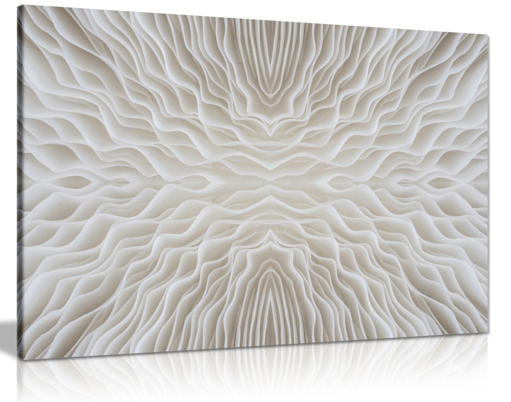 Abstract White Art Mushroom Canvas