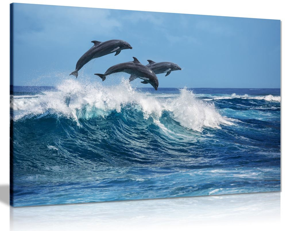 Dolphins Jumping Over Blue Waves Ocean Wildlife Canvas
