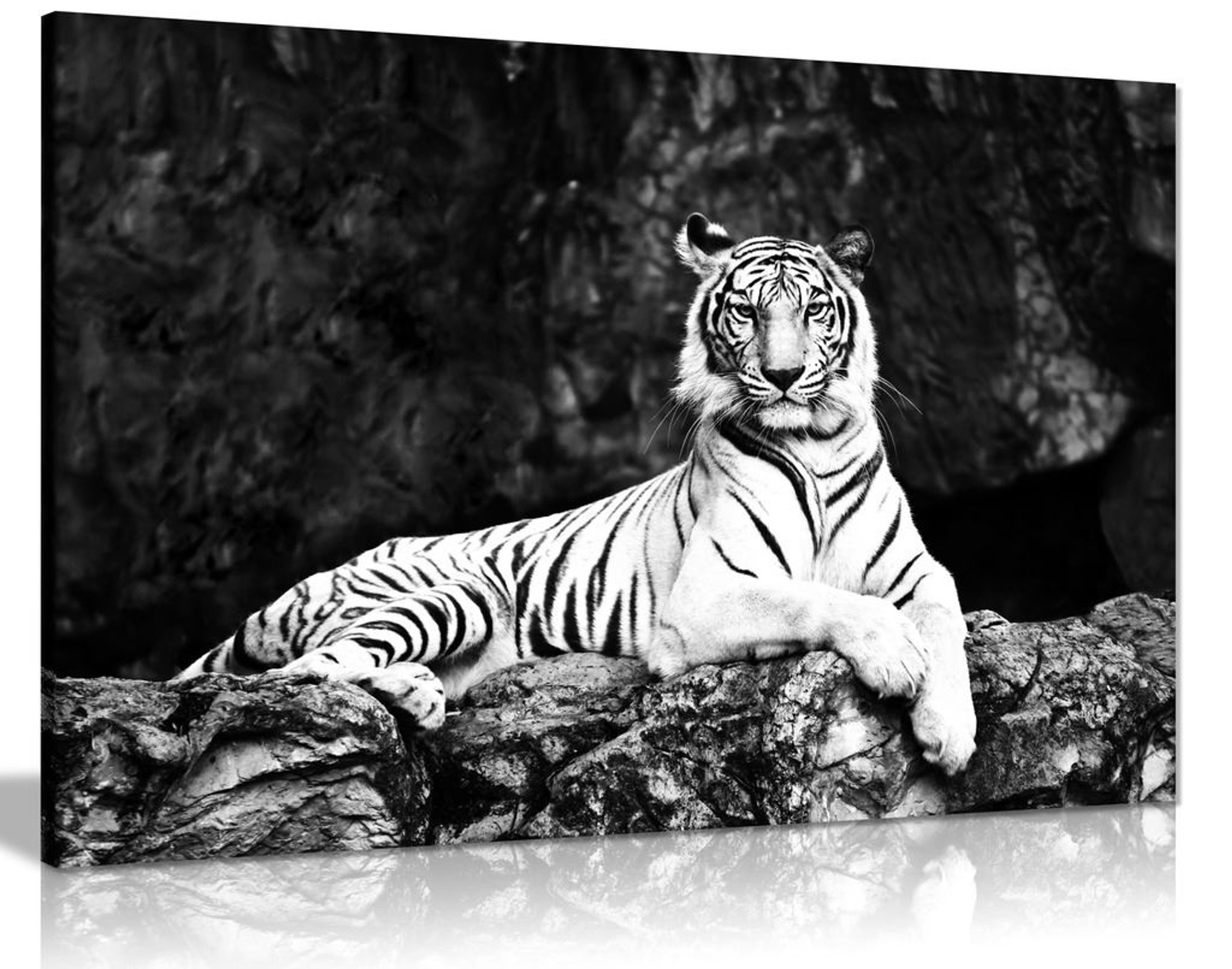 Black And White White Tiger Lie On Rock Canvas Wall Art Picture Print