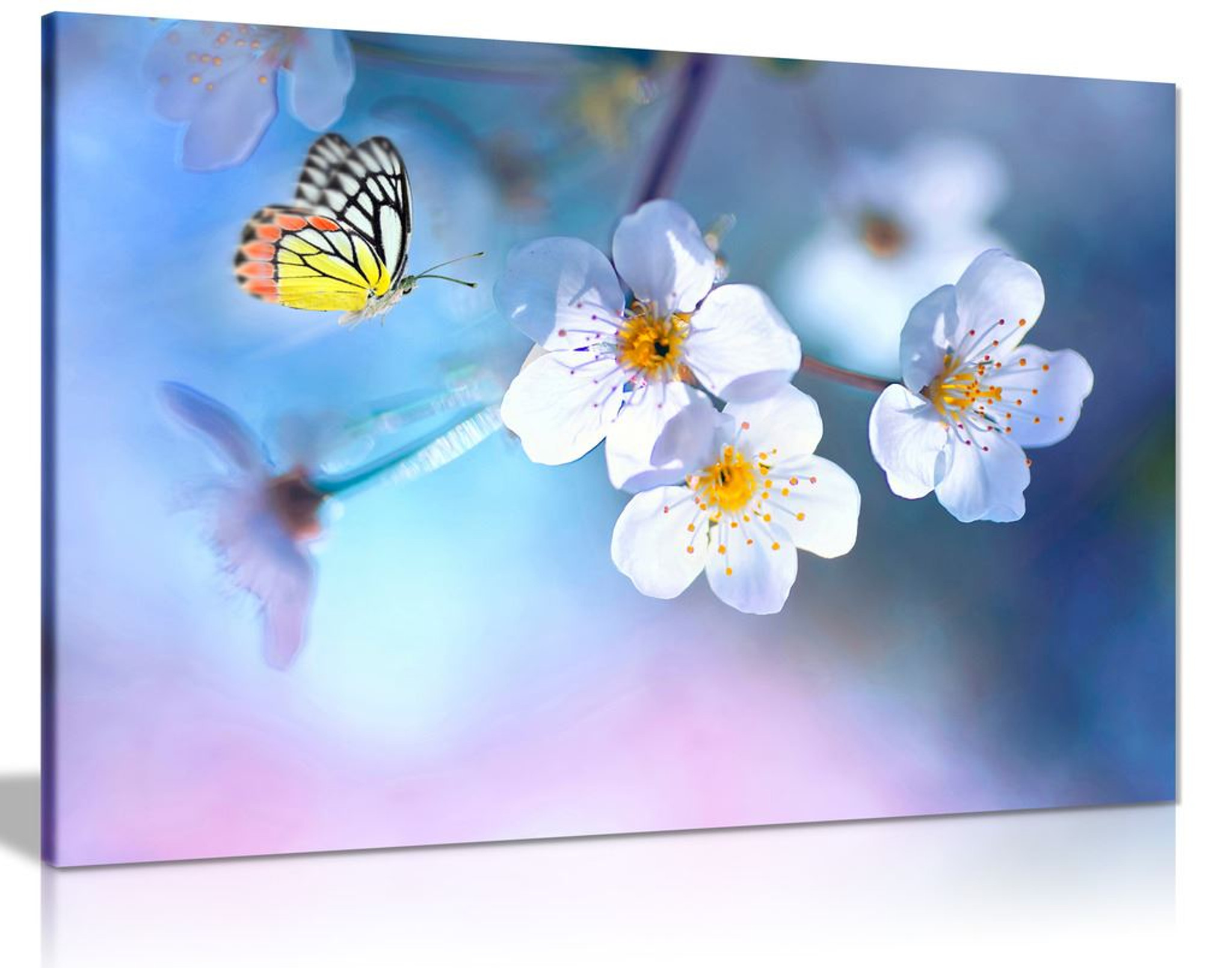 Beautiful Butterfly White Flowers Canvas Wall Art Picture Print