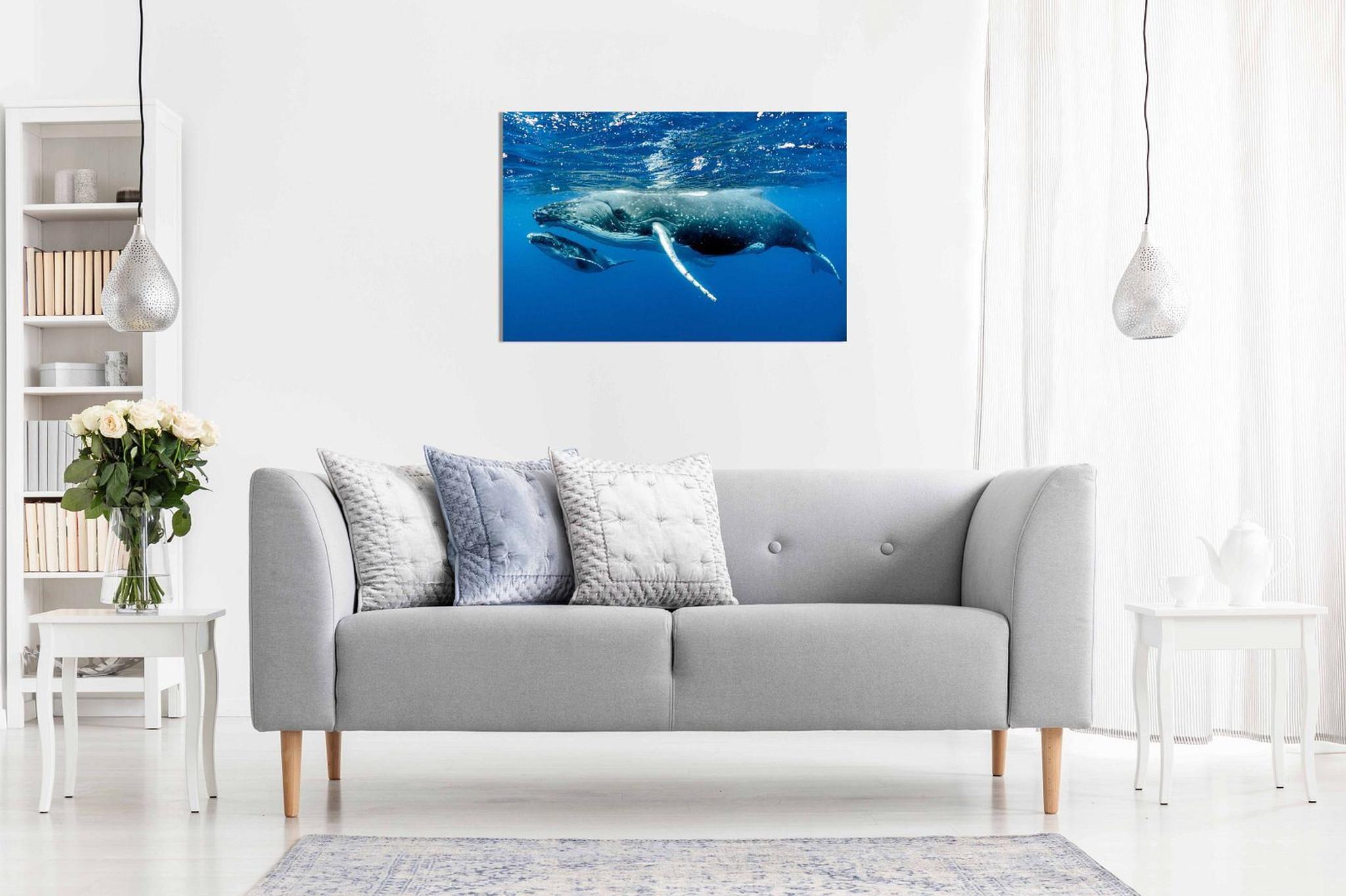 Humpback Whale Ocean SeaLife Sea Nature Canvas Wall Art Picture Print Home Decor