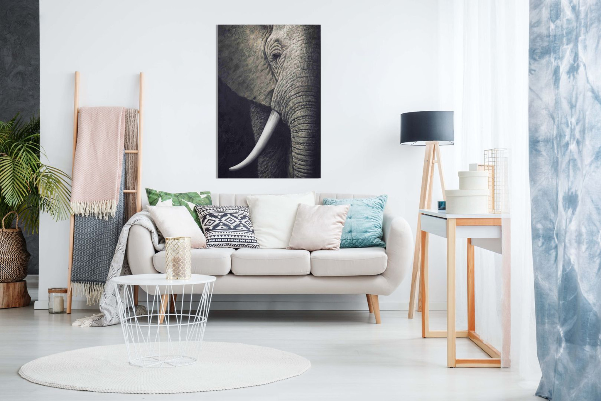 Black & White African Elephant Canvas