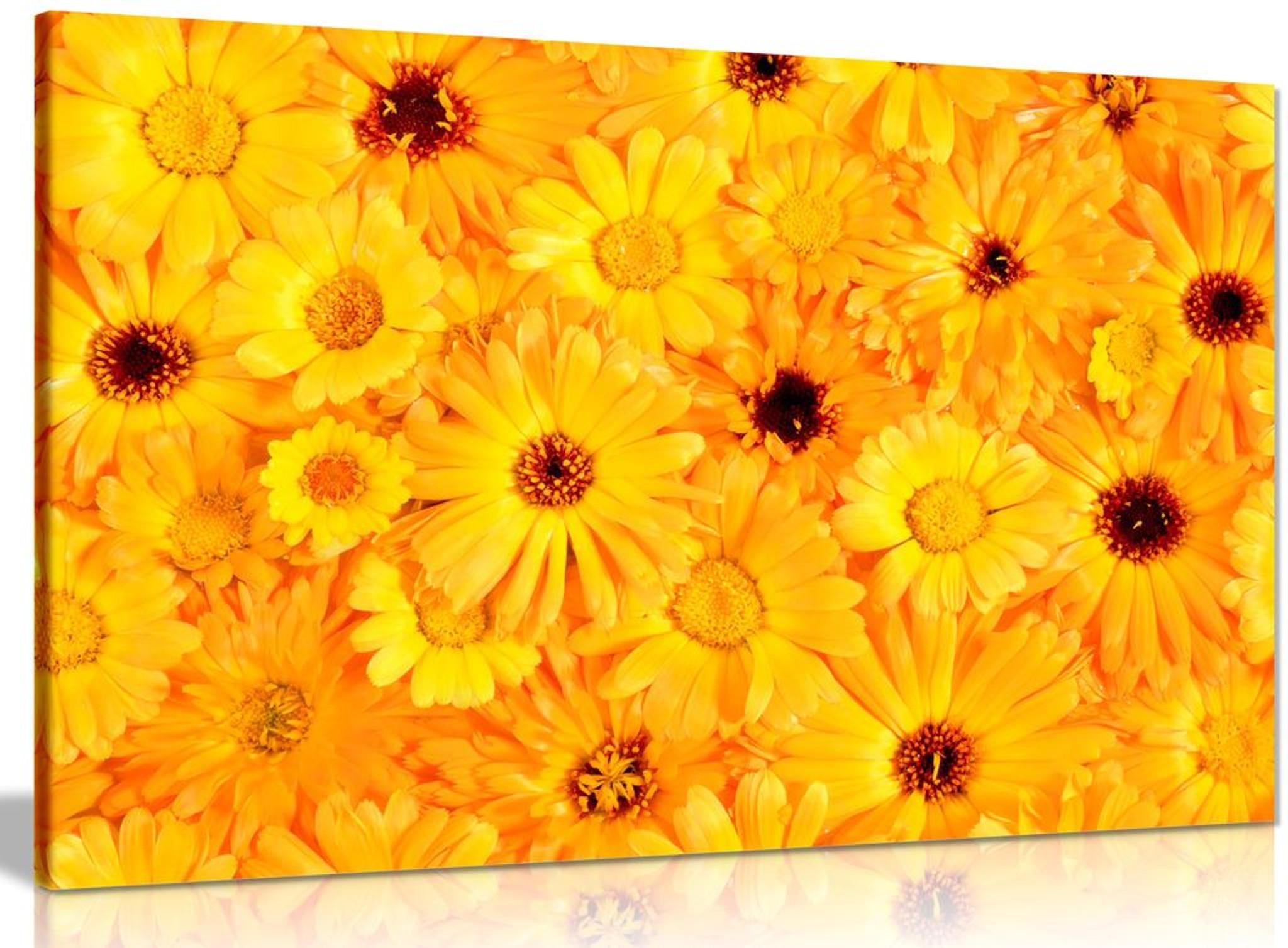 Orange & Yellow Flowers Canvas