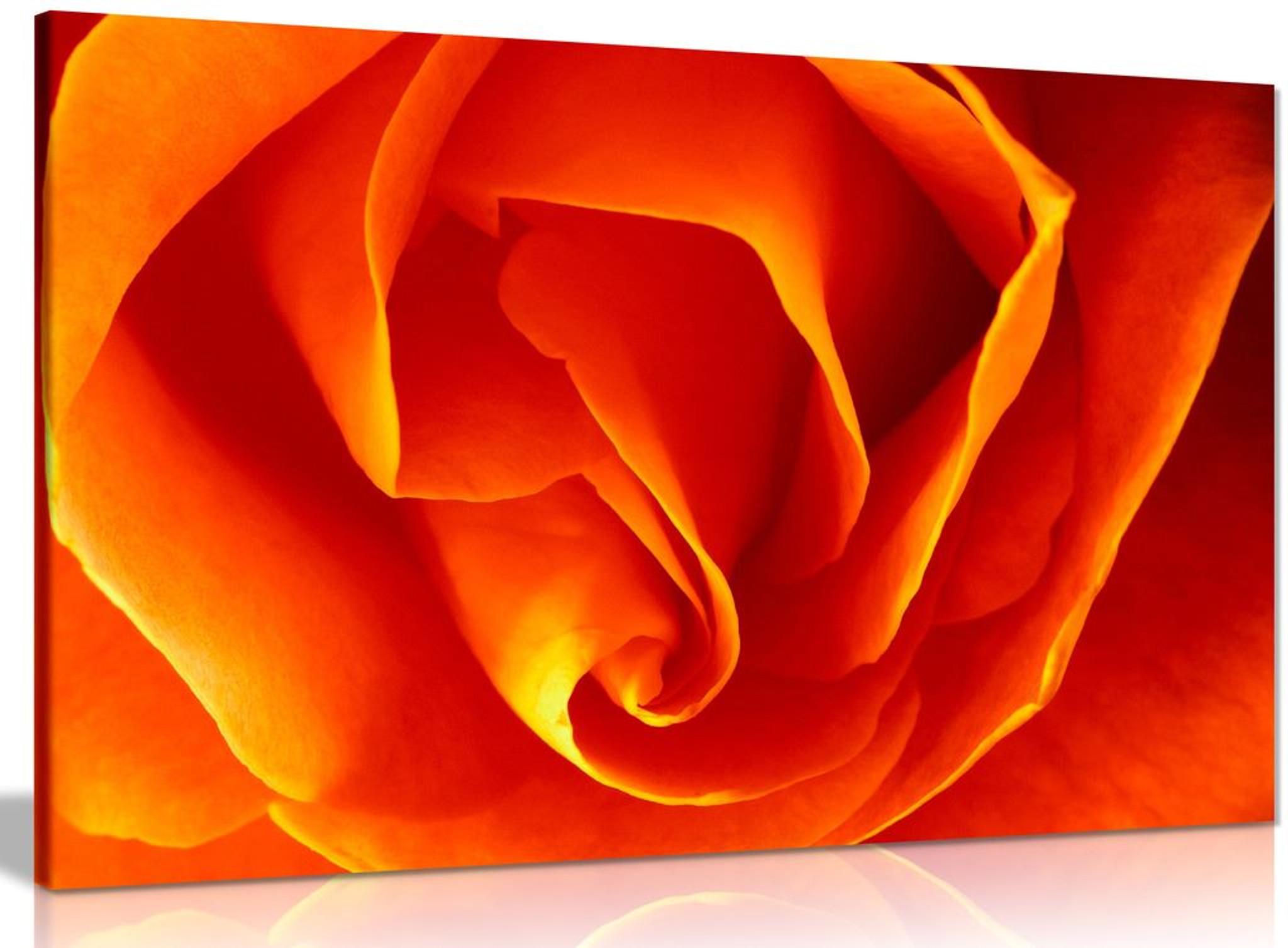 Floral Orange Rose Flower Canvas