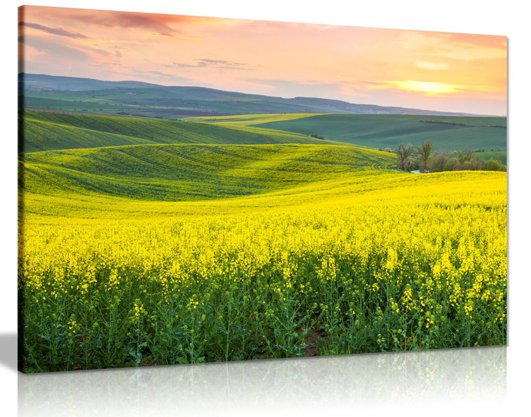Beautiful Spring Hills Yellow Valley Landscape Canvas