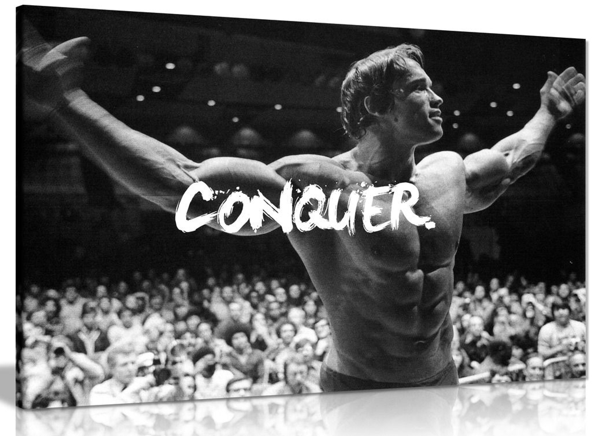 Motivational Inspiritional Arnold Schwarzenegger Conquer Canvas