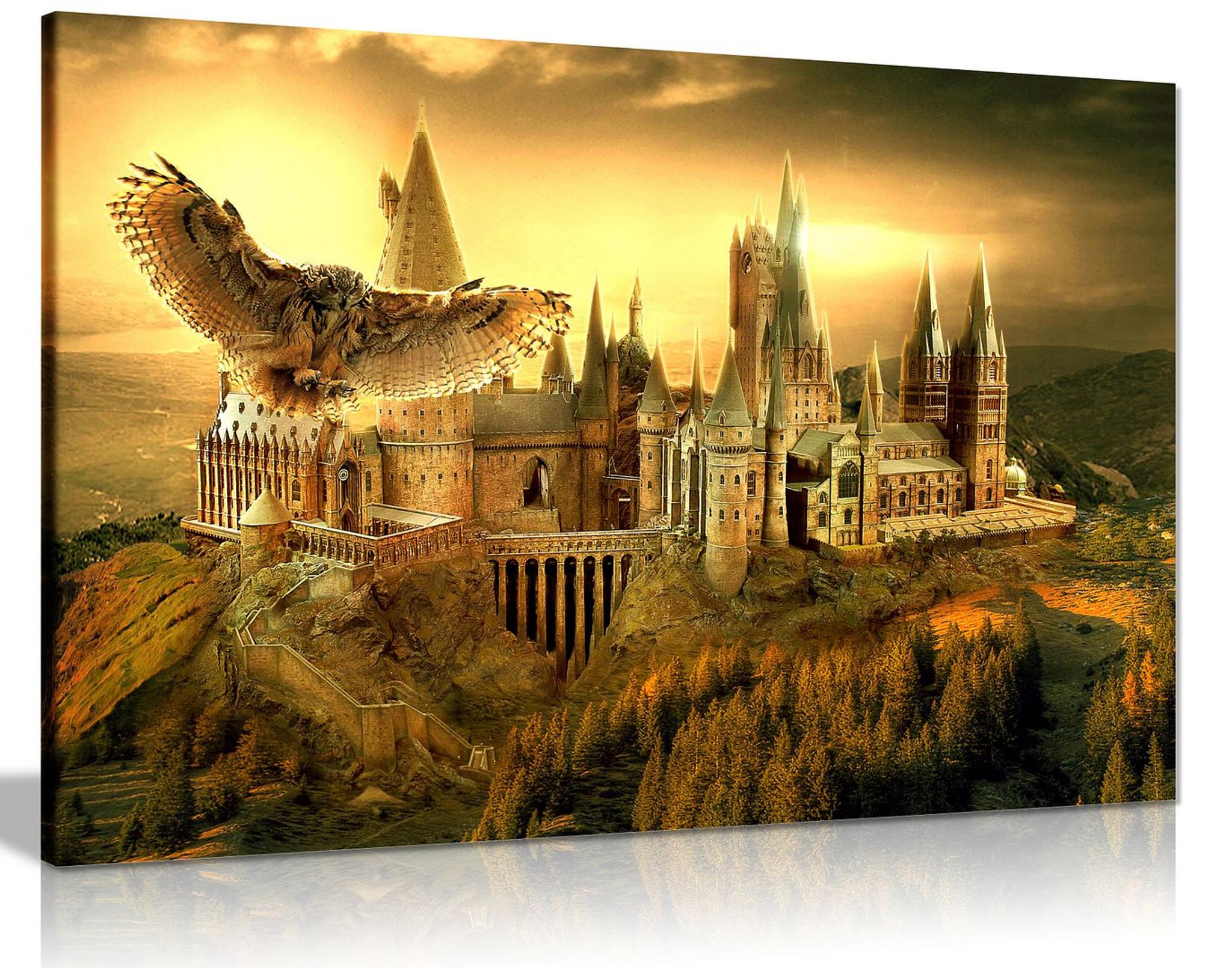 Harry Potter Hogwarts School Canvas