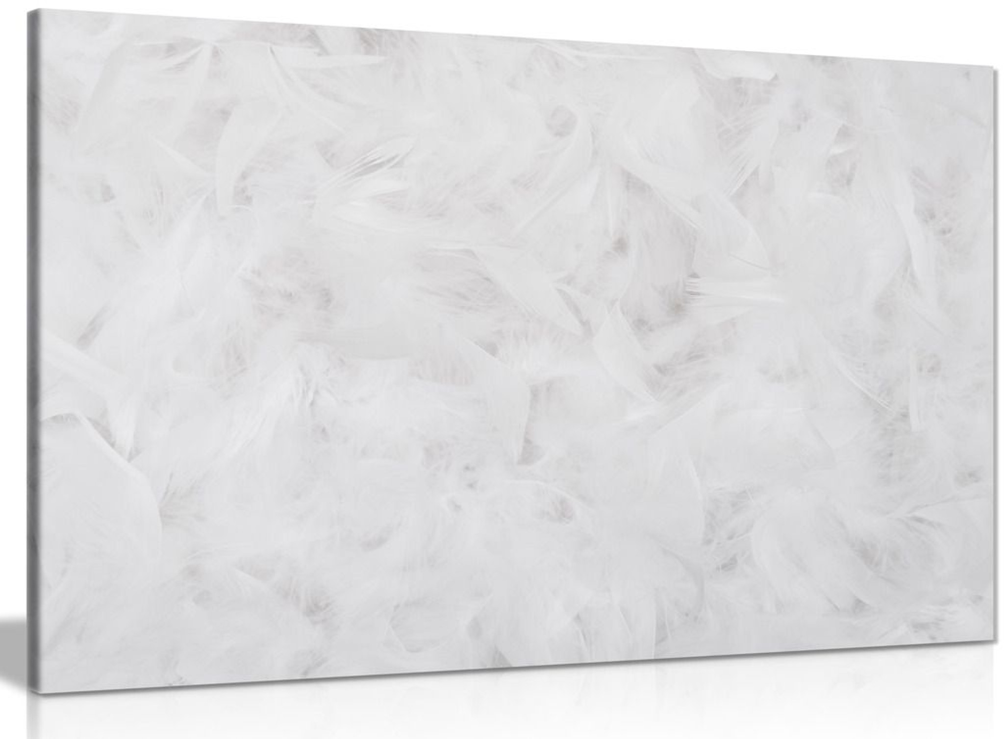 White Wall Art Abstract Feather Print Canvas