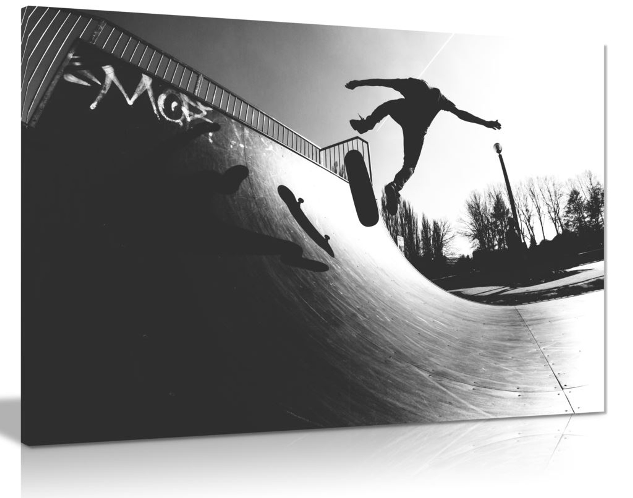 Skateboard Canvas Wall Art Picture Print