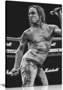 Iggy Pop Canvas Wall Art Picture Print