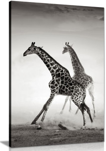 Giraffe Black & White Canvas Wall Art Picture Print