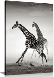 Giraffe Black & White Canvas Wall Art Picture Print