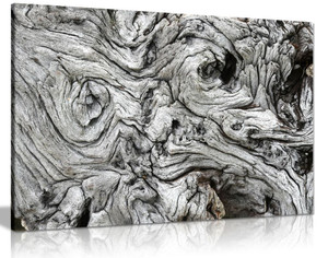 Black & White Driftwood Canvas Wall Art Picture Print
