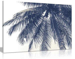 Black & White Coconut Tree Canvas Wall Art Picture Print