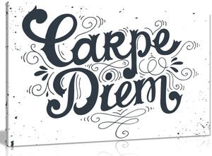 Carpe Diem Quote Vintage Canvas