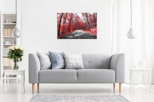 Black & White Road Trees Red Leaves Canvas